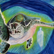 K327-G Turtle Swims North
