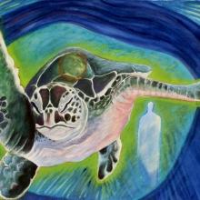 K327-G:Turtle Swims North
