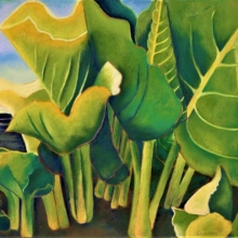 K371-Final-2-Skunk-Cabbage-North-Haven-spring-wc-and-pastel-on-300-hot-press-wc-paper-22.5-x-18.5-inches