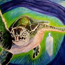 K327 Turtle Swims North best (2)